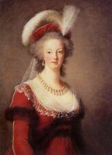 "oil painting handpainted on canvas ""Queen Marie Antoinette of France""@N13353"
