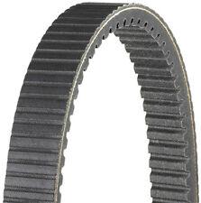 Dayco HPX5026 Belt