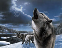 Matted Howling Wolf// Mountain Foil Art Print~Affordable Art~8x10~Animal