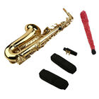 New Professional Gold  School Band Student Eb Alto Saxophone Sax with Case