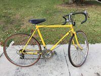 Vintage 10 speed bicycle Free Spirit Sears Yellow Men's