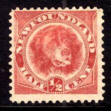 NEWFOUNDLAND #56 ½c ROSE RED, 1888, F, MINT HINGED