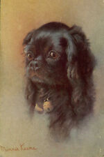 Cavalier King Charles Dog 1915 Spaniel Minnie Keene Large New Blank Note Cards
