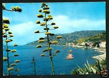 Pioppi ( Salerno ) : panorama - cartolina viaggiata nel 1967