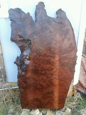 Redwood burl rustic table slab luthier wood turning source