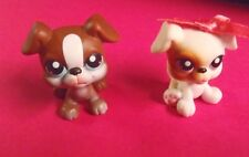 Littlest Pet Shop Boxer Puppies Pet Pairs #83 #84 Brown White Puppy Dogs