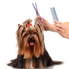 Tijeras para Mascotas Profesional Peluqueria Canina Puntas Redondeadas Con Peine