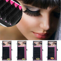 Silk Blink Lashes Tray Lash 0.12 B C D J Curl For Individual Eyelash Extensions