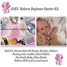 REBORN Starter Beginner Kit, Genesis paints, Mohair, DVD, REBORN DOLL KIT- JOEY