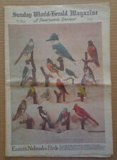 Sunday NEBRASKA Newspaper PANORAMIC A5 1953 BIRDS-Mike Todd-KATHRYN GRAYSON-TB