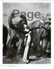 1955-rpt DOVIMA with Elephants DIOR gown Richard Avedon MATTED Paris France FAB