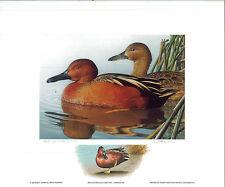 CALIFORNIA #19 1989 STATE DUCK PRINT Robert Steiner, Color Remarque #75/200