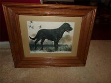 BLACK LABRODOR RETRIEVER PICTURE FRAMED DATED 1977 SIGNED BACK WATERCOLOR
