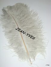 "20 SILVER OSTRICH FEATHERS 10-12""L GRADE *B*"