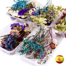 FLORES SECAS NATURAL DIY MANUALIDAD ARTE DRY FLOWERS ROSA CASERA ART RESIN JOYA