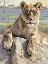 LION ART PRINT - Serengeti Lioness by Kalon Baughan 19x13 Wildlife Poster