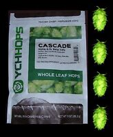 HOPS CASCADE 1oz LEAF CONE HOP FLOWERS YCH FACTORY PACKED FOR HOME BREWING BEER
