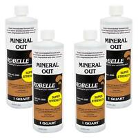 Robelle Mineral Out Swimming Pool Metal Remover - 4 Quarts
