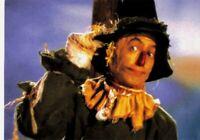 The Wizard of Oz Scarecrow #18 No Brain...Only Straw