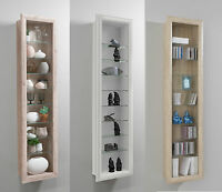 Bora Wall Mounted Glass & Wood Display Cabinet Shelving