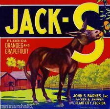 Higley Arizona Hawes Donkey Mule Vegetable Crate Label Vintage Art Print