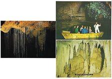 3 AK Höhlen in Neuseeland, Glow-Worm Cave, 2x Waitomo Cave