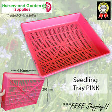 Seedling Propagation Plant Tray - Restricted drainage PINK