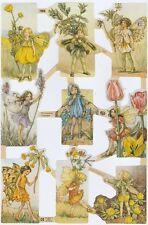 Chromo Le Suh Découpis Fée des fleurs 1958 Embossed Illustrations Flower Fairy
