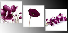 Plum Floral Set of 3 Canvas Art Pictures Wall Art 3 x (52 x 52cm) ready to hang