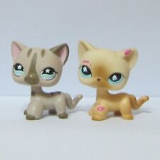 2x Littlest Pet Shop LPS Animal Toy Short Hair Kitty Cat #816 Siamese & #468 Cat