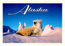 Alaska Postcard Polar Bears Cubs Momma Snow Blue Sky New