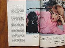 1963 TV Guide(JUNE  BLAIR/SAM  JAFFE/DAVID  NELSON/TERRY MOORE//BETTYE ACKERMAN)