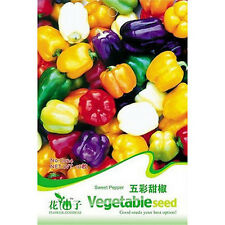 FD1285 Sweet Pepper Seed Colorful Ornamental Pepper Seeds ~1 Pack 20 Seeds~ A