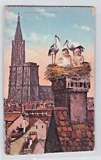 RARE excimer AK 1911@strassburger storchennest@restaurant continental@strasbourg