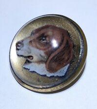 Antique Domed Glass Dog portrait Horse Bridle Rosette pin brooch