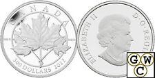 2012 Platinum 'Maple Leaf Forever' Proof $300 Coin 1oz .9995 Fine (12991)