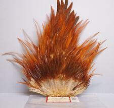 Indian rooster saddle wapsi usa belle petite saddle brown