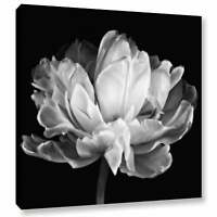 ArtWall Cora Niele 'Tulipa Double Black & White II'  Large