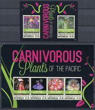Mikronesien Micronesia 2012 Fleischfressende Pflanzen Carnivorous Plants MNH