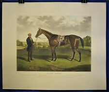 Blink Bonny (Horse - Engraving)