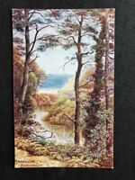 Vintage Postcard: Artist Signed: A R Quinton:  A460: Branksome Chine Bournemouth