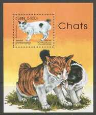 Cambodian Cats Postal Stamps
