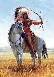 Native American Indian Warrior Chief Headdress Art Horse Canvas Print A3