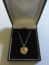 """9 ct. Gold necklace & Heart Shaped  """"Dolphin""""  Locket."""