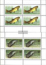 DDR (RDA) 3096I-3097I hoja miniatura usado 1987 peces de agua dulce