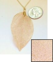 Gorgeous Delicate Gold Dipped Genuine Laurel Bay Leaf Pendant Necklace, 18""