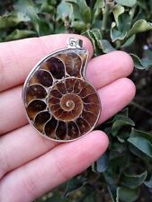 Beautiful natural ammonite Fossil shell Pendant