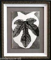Pablo PICASSO Lithograph Pochoir Ltd. Edition no.117 w/ Cat. Ref. C115 +FRAMING