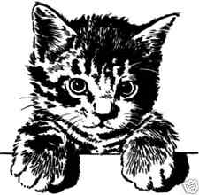 """P6  Hang in There! Kitten rubber stamp 2.3x2.7"""" WM mounted"""