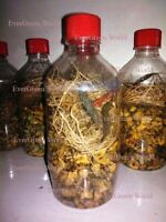 Herbal Hair Oil Mix - Amazing Blend of INDIAN Herbs, for Long and Thick Hair $